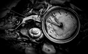 Картинка часы, black and white, Time is now