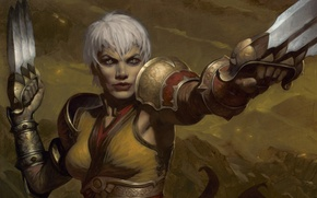 Картинка женщина, ножи, Diablo 3, Монахиня