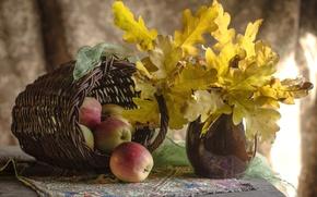 Картинка осень, листья, яблоки, натюрморт, дуб