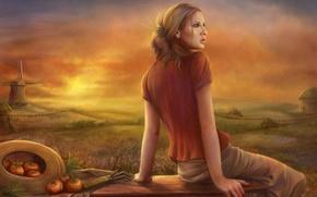 Картинка поле, небо, трава, девушка, облака, цветы, работа, поляна, усталость, забор, еда, мельница, домик, помидоры, трудится