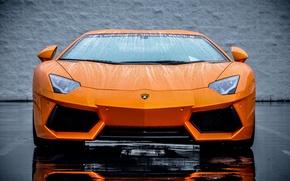 Картинка Lamborghini, Оранжевый, Orange, Суперкар, LP700-4, Aventador, Supercar, Передок