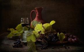Картинка натюрморт, вино, виноград, кувшин