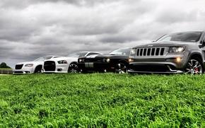 Картинка авто, небо, трава, крастоа, jeep grand cherokee, dodge challenger str8, chrysler 300 srt8, dodge avenger ...