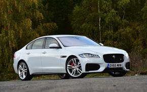 Картинка Jaguar, ягуар, Sedan