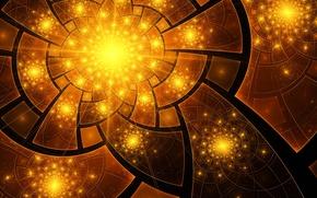 Картинка цветок, лучи, свет, линии, лепестки, сектор