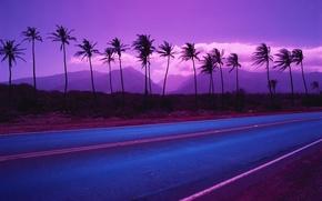 Обои цвет, пальмы, 153, дорога, горы