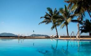Обои пальмы, таворн бич, бассейн, отдых, отель