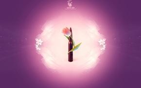 Обои минимализм, патрон, цветок
