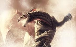 Обои дракон, NeverWinter Nights