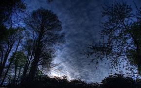 Обои небо, пейзаж, ночь