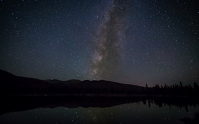 Картинка космос, звезды, деревья, ночь, млечный путь