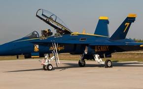 Картинка самолет, истребитель, usa, blue angel, u.s.navy