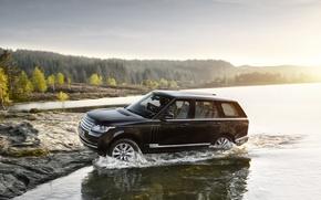 Картинка car, машина, Range Rover, рендж ровер, Land Rower