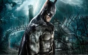 Обои картина, Batman: Arkham Asylum, дом