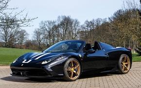 Картинка Ferrari, феррари, 458, 2014, Pininfarina, Speciale A