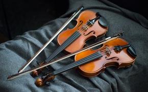 Картинка музыка, фон, скрипки