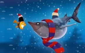 Обои акула, мульт, рыбка
