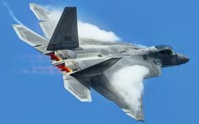 Обои небо, оружие, самолёт, F-22 Raptor