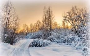 Картинка снег, зима, дорога, деревня, вечер, подмосковье, пейзаж, закат