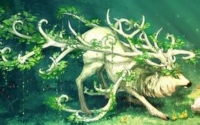 Обои трава, животное, птица, растения, рога, утка, зелёные глаза