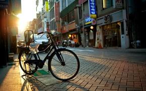 Обои утро, велосипед, лучи, тротуар, магазины, вывески, дома, ветрины, город, улица, солнце, дороги