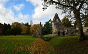 Картинка поле, осень, небо, листья, облака, деревья, природа, тропа, colors, Шотландия, wall, руины, мостик, листопад, sky, …