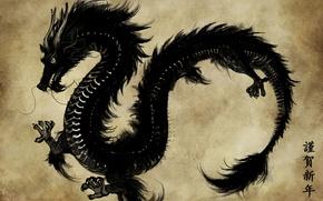 Картинка бумага, черный, дракон, азия, рисунок, арт, иероглифы, пергамент, eliz7