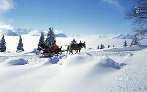 Картинка сани, горы, зима, лошади, настроение, солнце, горизонт, облака, ель, снег, свет, мороз, люди, елка, погода, ...