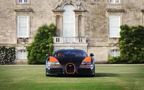 Картинка Bugatti, Veyron, WRC, Vitesse