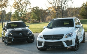 Картинка Mercedes-Benz, Inferno, TopCar, M-Klasse