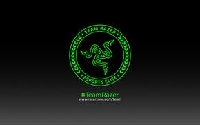 Картинка Art, Green, Black, Logo, Razer, White, Hi-Tech, Minimalism, Team Razer