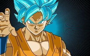 Картинка game, star, fighter, anime, transformation, asian, warrior, manga, japanese, chest, god, Son Goku, kimono, oriental, …