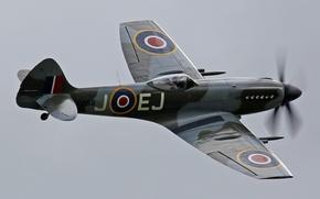 Картинка небо, истребитель, британский, одномоторный, WW2, Supermarine, Spitfire Mk. XIV