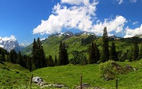 Картинка небо, облака, деревья, горы, Швейцария, Альпы