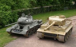 Картинка Тигр, Забор, Деревья, Техника, Т-34, Танки, Военная