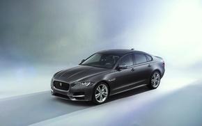 Картинка 2015, ягуар, Jaguar