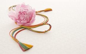 Картинка цветок, праздник, Япония, пион, сувенир
