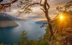 Обои горы, деревья, залив, фьорды, Норвегия, лучи солнца, скалы, камни, закат