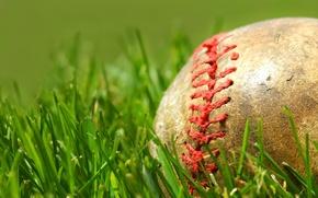 Обои мяч, зеленый, трава, шов