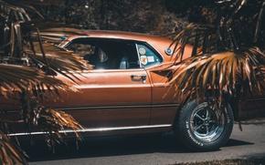 Картинка 1969, Ford Mustang, мускул кар