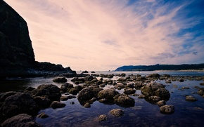 Картинка море, облака, пейзаж, скала, камни, берег, птица в небе
