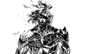 Картинка рисунок, броня, Ниндзя, Киборг, Raiden, Metal Gear Rising: Revengeance, NeoGAF, Platinum Games, Konami, Kojima Productions