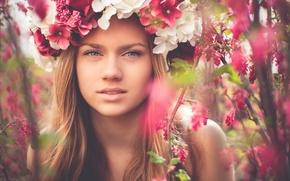 Картинка взгляд, цветы, лицо, портрет, венок
