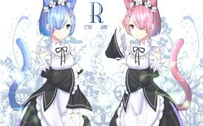 Картинка девушки, ушки, сёстры, хвостик, Ram, Rem, Re: Zero kara Hajimeru Isekai Seikatsu