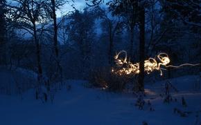 Обои холод, снег, пейзаж