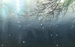 Картинка зима, свет, снег, пруд, ветка, Макото Синкай, Сад изящных слов