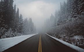Картинка дорога, природа, туман, зима, снег, лес, дымка