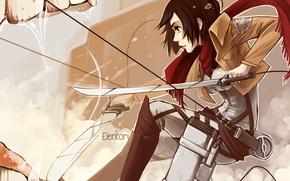 Картинка девушка, меч, воин, пасть, shingeki no kyojin, mikasa ackerman, Attack on Titan, Вторжение Титанов, микаса