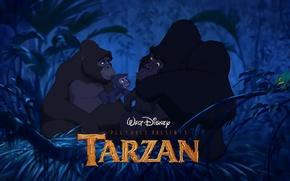 Картинка лес, мультфильм, обезьяны, дисней, Тарзан, гориллы