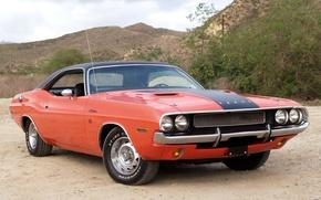 Картинка фон, Додж, Dodge, Challenger, 1970, передок, Muscle car, Мускул кар, R/T, Челенжер